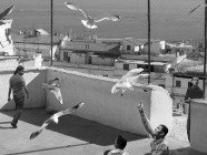 © David Claerbout, The Algiers' Sections of a Happy Moment,</em> video 2008